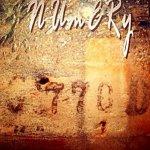 Numery gallery